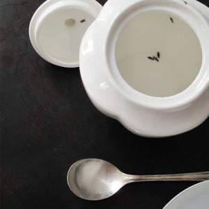 ant in sugar pot